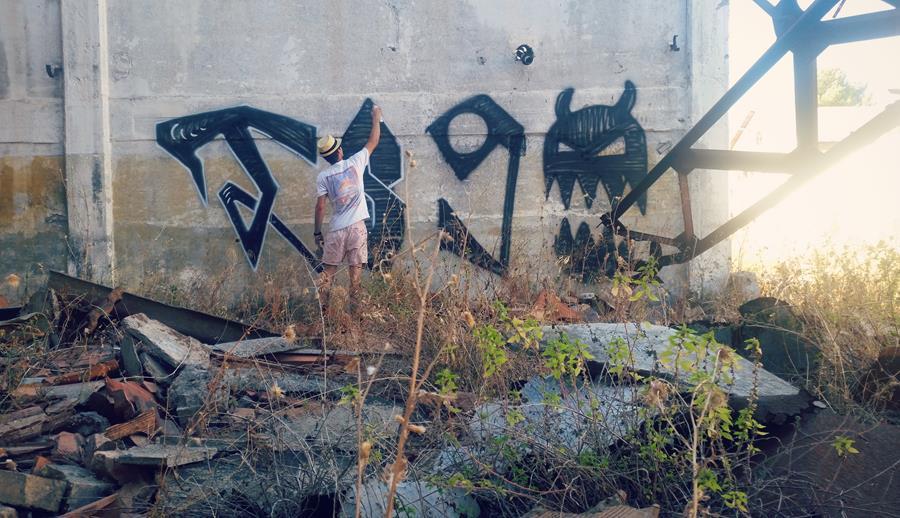 Figura 4.57 - Skirl in fabbrica abbandonata a Roma - Foto di Ivana De Innocentis
